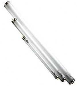 Lamp Cleo 20W