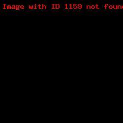 Примеры экслибрисы