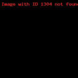 штамп визитка ШВ12