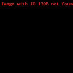 штамп визитка ШВ_11