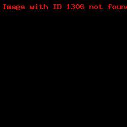 штамп визитка ШВ_10