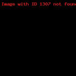 штамп визитка ШВ_9