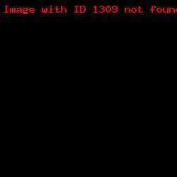 штамп визитка ШВ_7