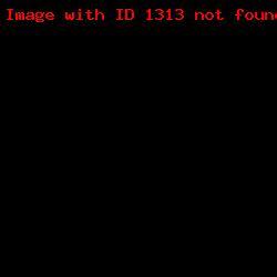 штамп визитка ШВ_3