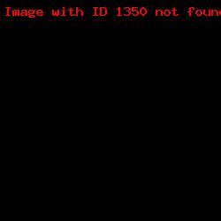 Угловой штамп организации